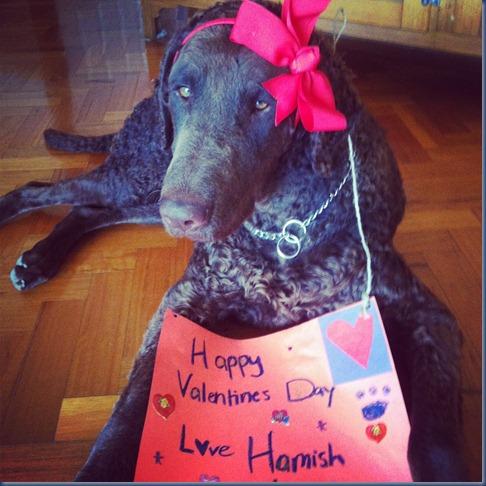 Hamish Valentine
